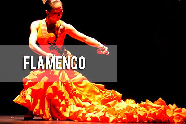 Flamenco Noche Pícara